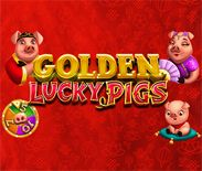 Golden Lucky Pigs